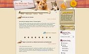 Katzen angebote schweiz