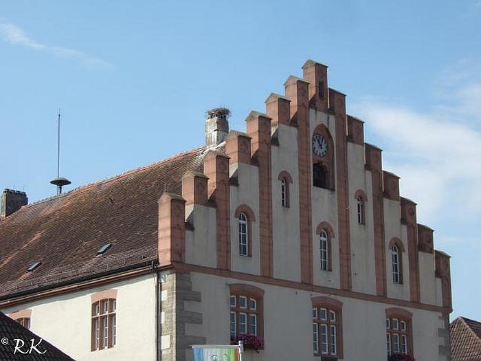 Störche In Hammelburg